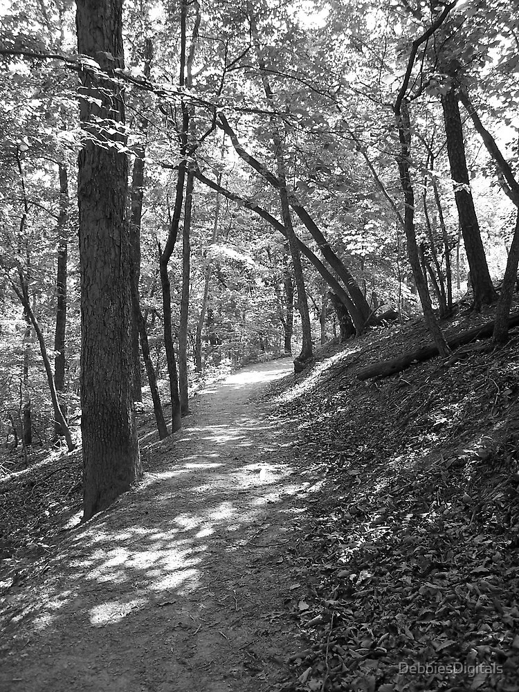 Wooded foot path by DebbiesDigitals
