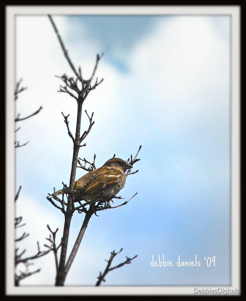 Bird atop a tree by DebbiesDigitals