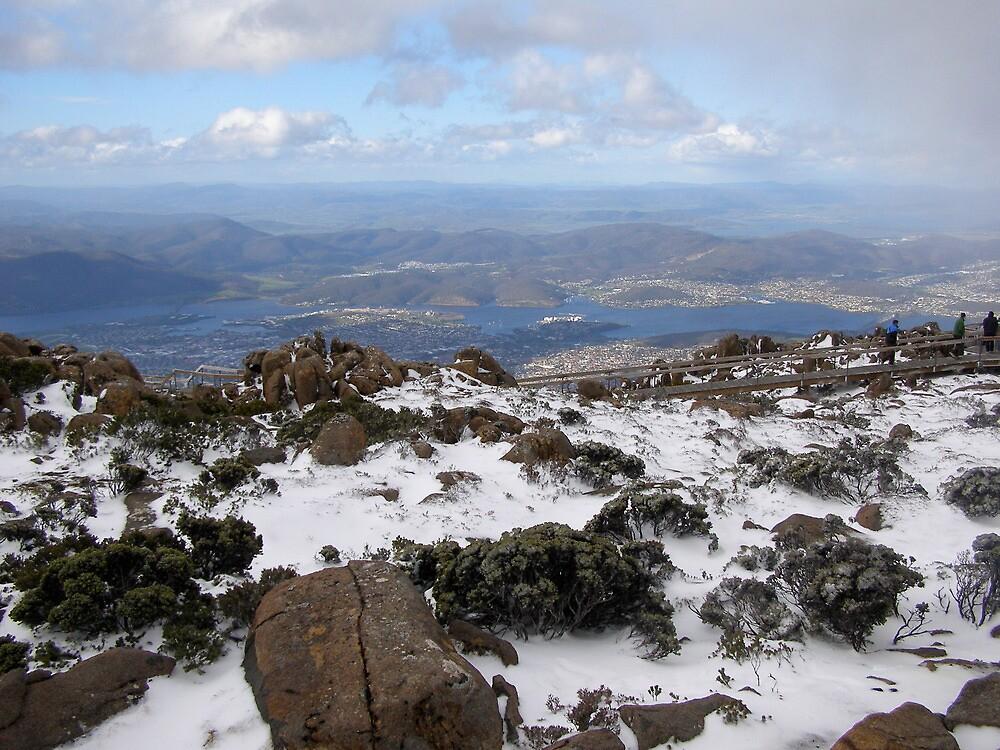 view over Hobart area- Tasmania by cheza77