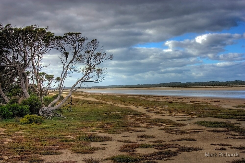 The Coorong - Backwater - The Coorong, Limestone Coast, South Australia by Mark Richards