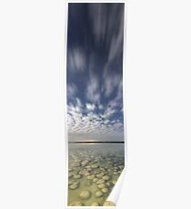 Lake Clifton Thrombolites  Poster
