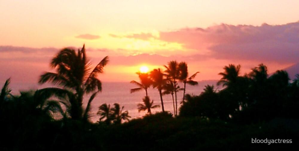 Hawaiin Sunset by bloodyactress