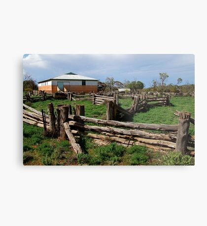 Historic Pastrol Shearing Shed, Canopus Metal Print