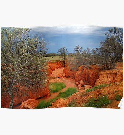 Natures Colours,Outback N.S.W. Poster