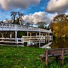 Whitchurch Toll Bridge by IanWL