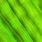 Flowing veins of Nature - Bright Lime Green Leaf Abstract by John Kelly Photography (UK)