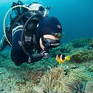 Diver and clown fish - Bali by Stephen Colquitt