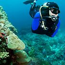 Simon diving on the reef - Bali  by Stephen Colquitt