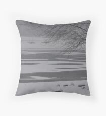 Frozen Lake Scene Throw Pillow