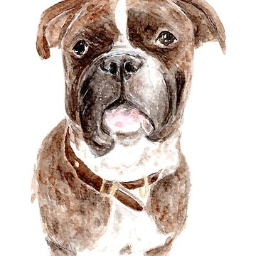 Bulldog/Boxer Mix Portrait [Ole] - Watercolour Painting by patti2905