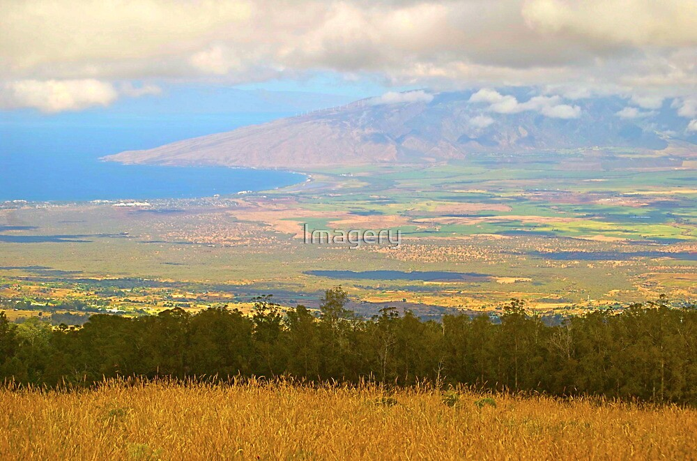 On the Road to Haleakala by Imagery