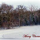 Winter in Sussex by Foxfire