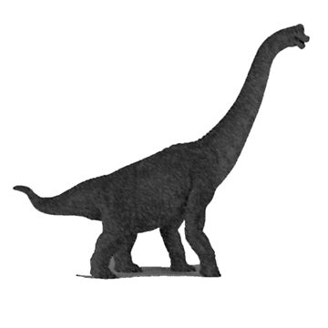 Black Brontosaurus Art Sketch - Dinosaur Jurassic Period by oggi0
