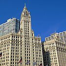 The Wrigley Building by Imagery