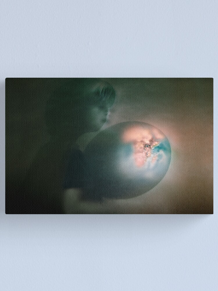 Alternate view of What about the world Canvas Print