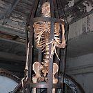 Skelington by iagomega