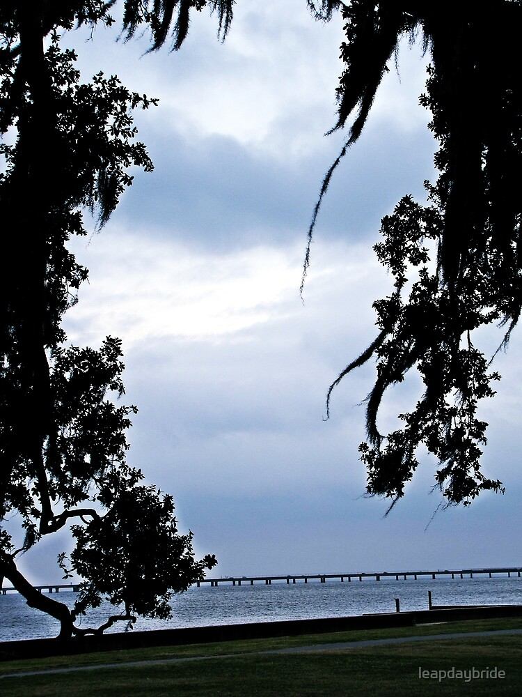 mandeville lakefront by leapdaybride