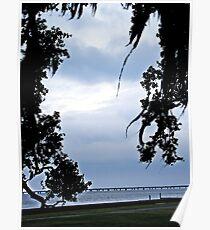 mandeville lakefront Poster