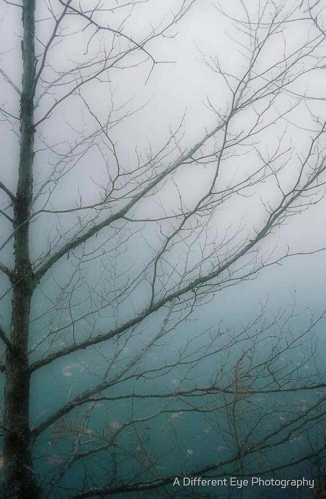 Veins In Misty Blue by Heather A McGhee