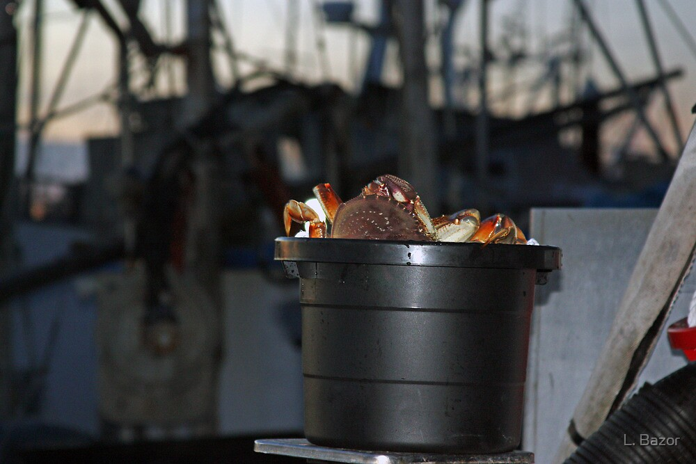 Crabs in a Bucket by L. Bazor