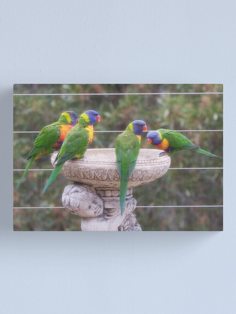 Alternate view of Four Lorikeets Canvas Print