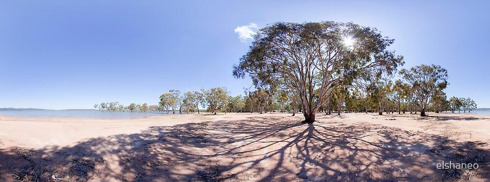 Lake Trees Panorama by elshaneo