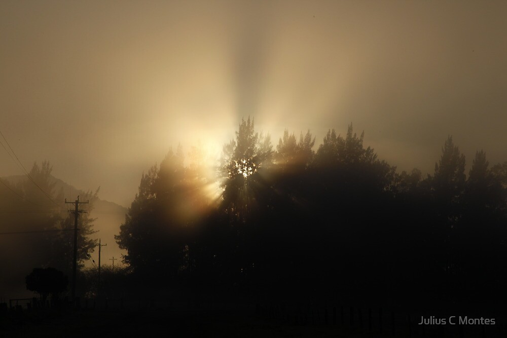 Light Being by Julius C Montes