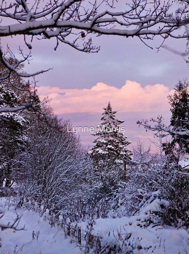 Merry Christmas  by Lynne Morris