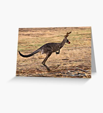 Rudolph the Red Nosed Kangaroo Greeting Card