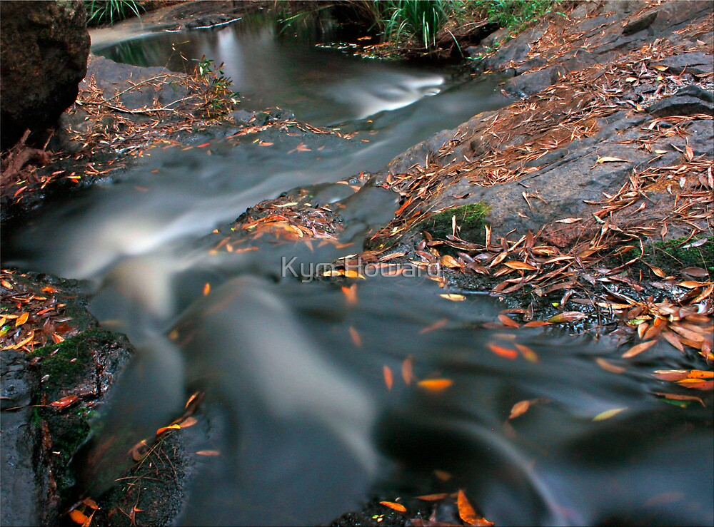 Rush of Water by Kym Howard