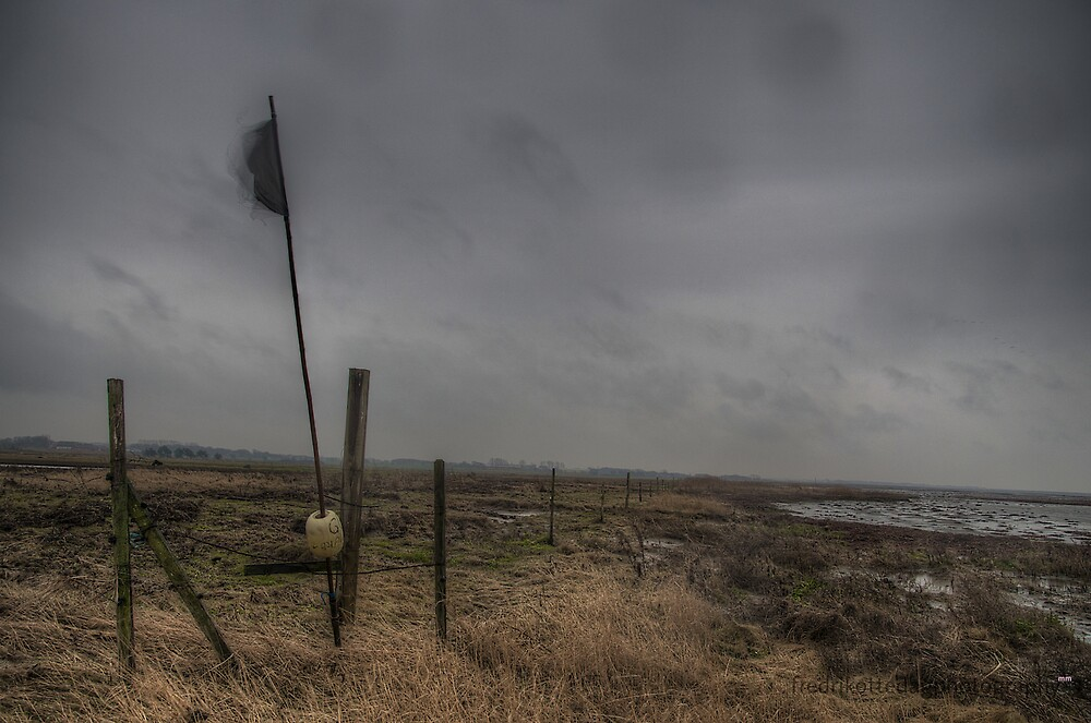 Black Flag Horisontal Rain by Fredrik Ottedag