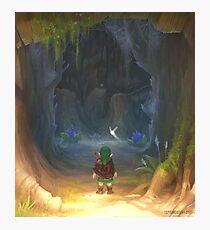 Lámina fotográfica La entrada de la gran mazmorra del árbol Deku