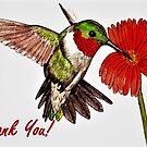 Humming Bird - Thank You Card by EuniceWilkie
