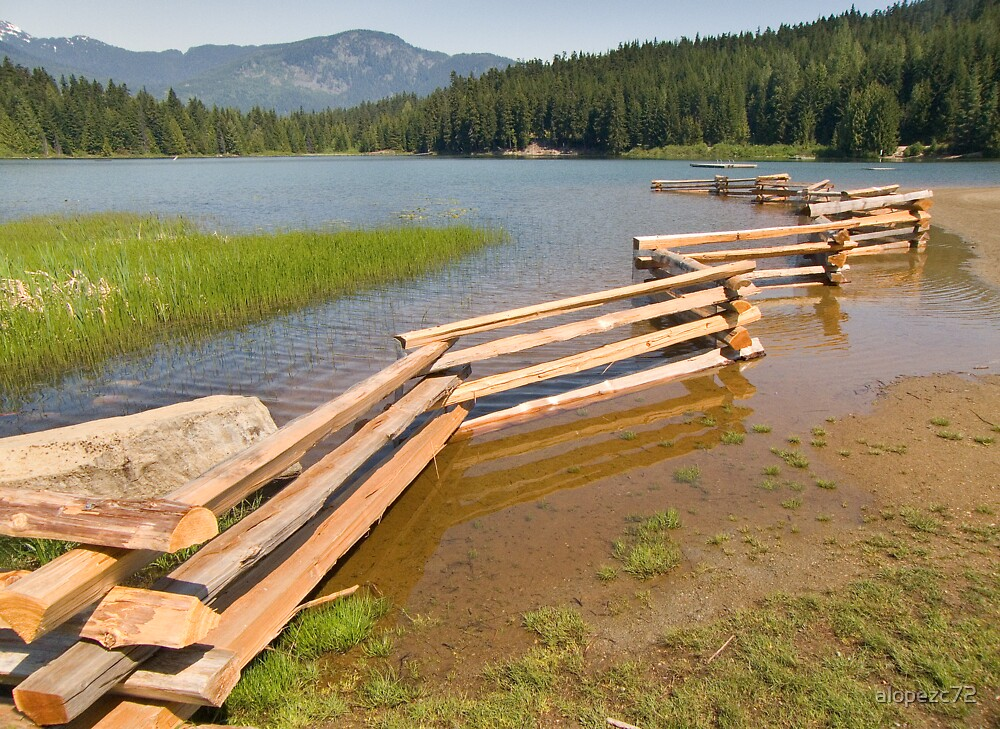 Wooden fence in the Lost lake , Whistler , Canada by alopezc72