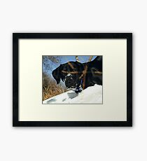 Maggie the Snowplow Framed Print