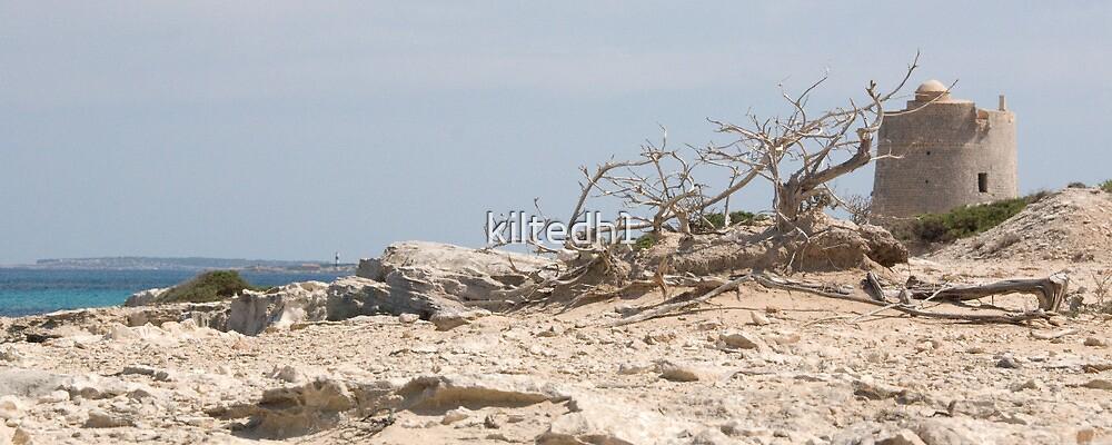 Las Salinas, Ibiza (landscape) by kiltedh1