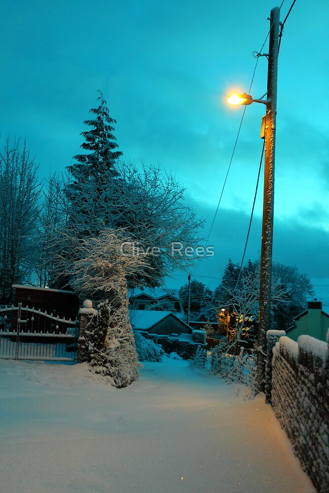 Snow by Clive  Rees