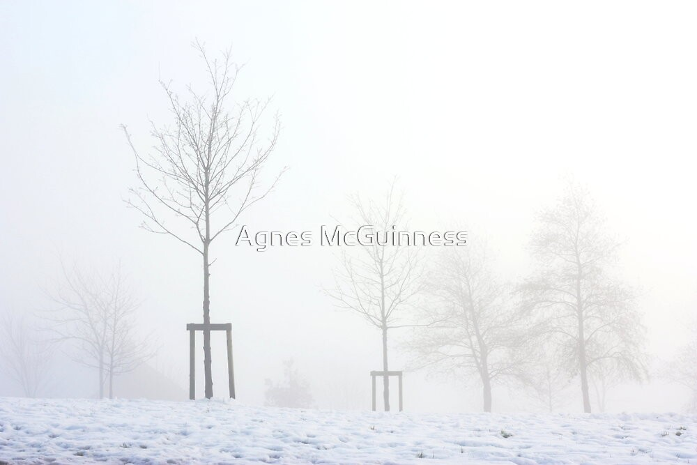White mist by Agnes McGuinness