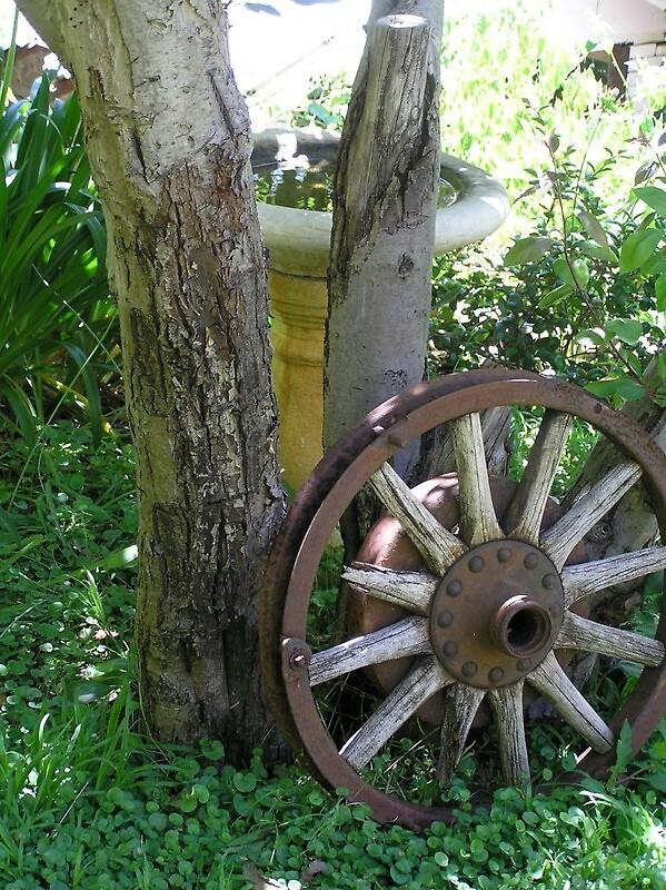 Wagon wheel in friend's garden by Wildflower7777