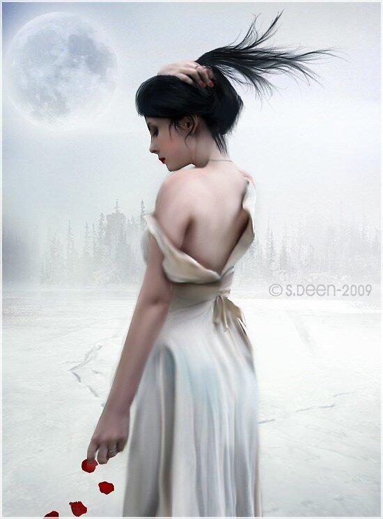 Winter Rose by Shugga