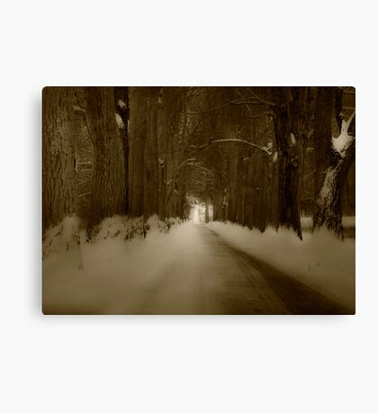 Bride in Woods Canvas Print