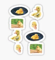A Ducking Sticker Sheet Sticker