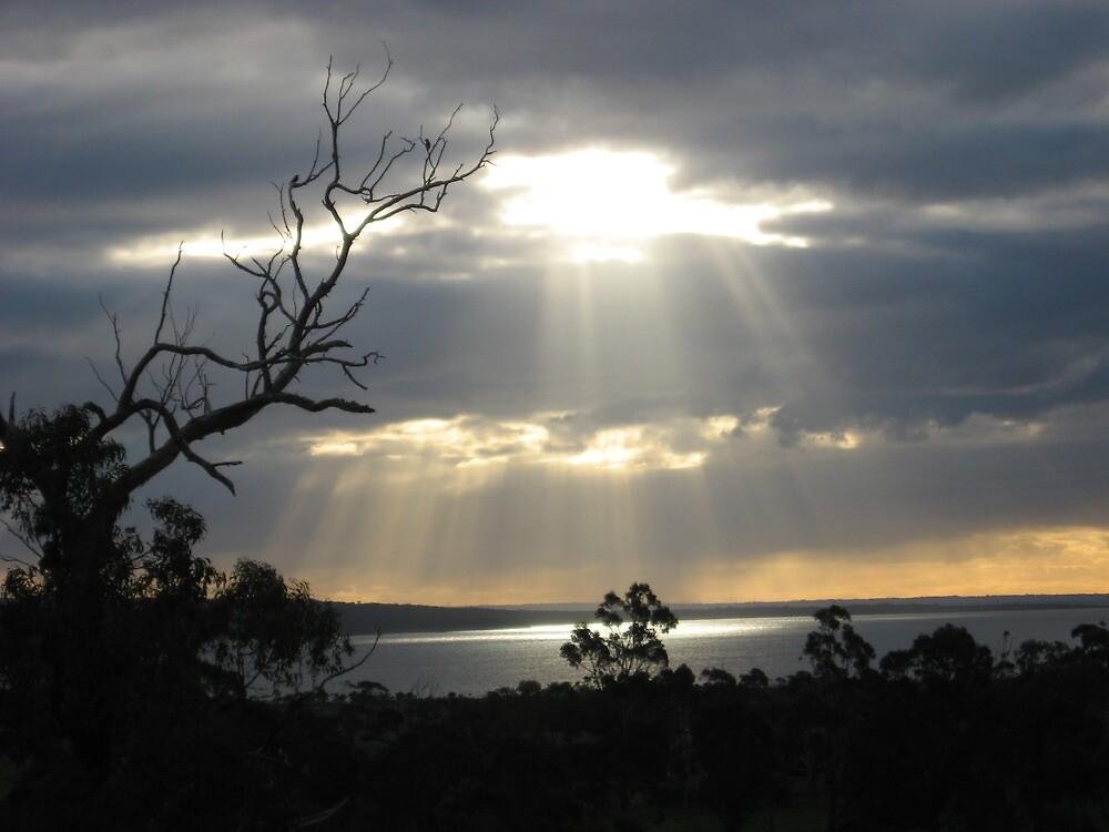 setting sun on water( Gurdies) by sueg