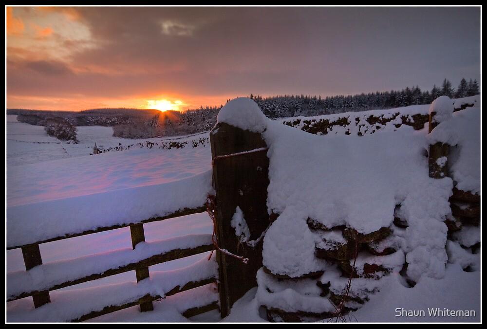 Sunburst over a snowfield by Shaun Whiteman