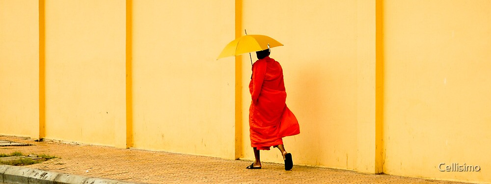 Monk walking in Angkor Wat - Cambodia by Cellisimo