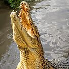 Jumping Crocodile by TonyCrehan
