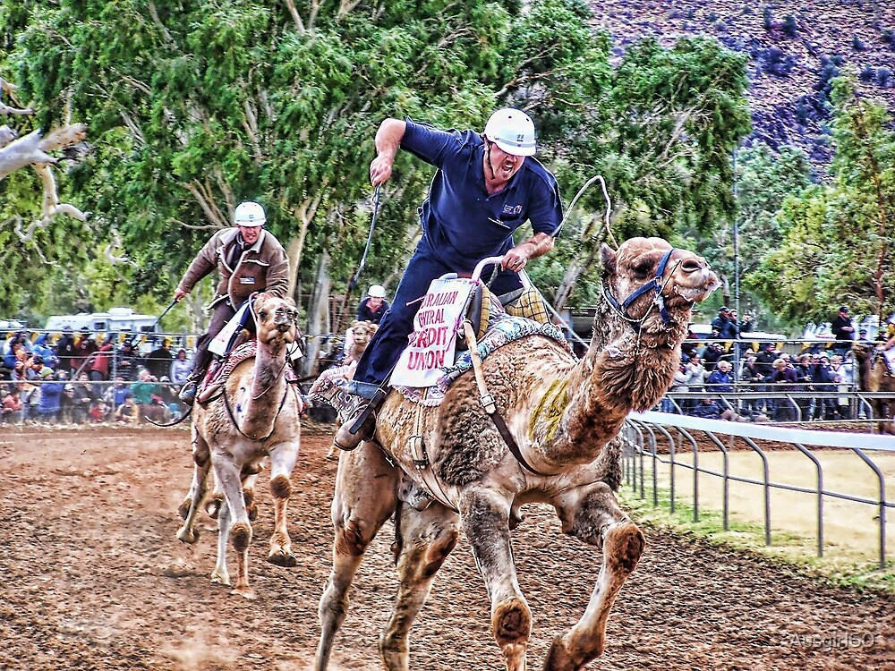 Alice Springs Camel Race by Ausgirl60