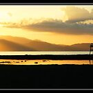 Lakey Gold by davenreef