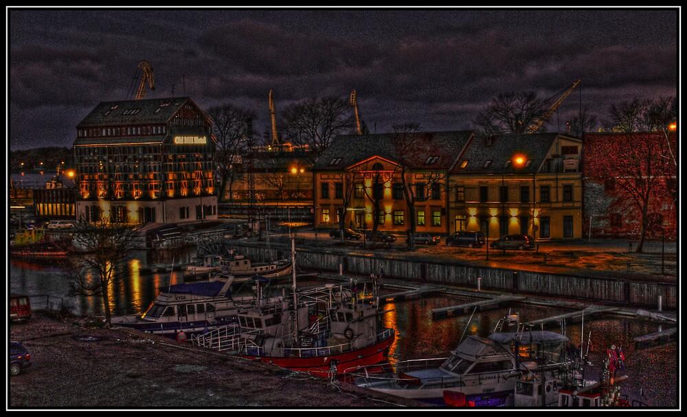 Klaipeda's port in the night by romenas
