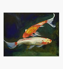 Feng Shui Koi Fish Photographic Print